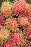 Rambutan or hairy fruit, popular fruit of Thailand Stock Image