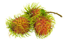 Rambutan isolated on white. Background Stock Photo