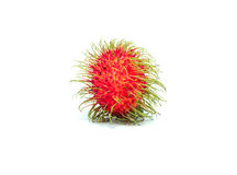 Rambutan isolated on white background . Rambutan isolated on white background Stock Photography