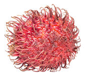 Rambutan isolated on the white background. With clipping path Royalty Free Stock Images