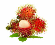 Rambutan with leaves isolated on white background. Rambutan with leaves isolated on a white background Stock Photography