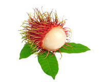 Rambutan with leaves isolated on white background. Rambutan with leaves isolated on a white background Royalty Free Stock Image