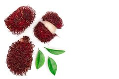 Rambutan with leaves isolated on white background with copy space for your text. Tropical fruit. Nephelium lappaceum royalty free stock photo