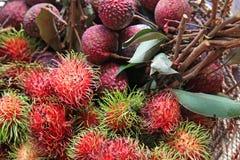 Rambutan and lichee. On the basket Stock Image