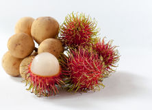 Rambutan and Longkong are fruit southern asian flavor sweet. Iso Royalty Free Stock Photo