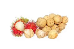 Rambutan and  longkong. Rambutan and longkong (Thai), langsat (Malay), or duku (Indo)  isolated on white background Stock Image