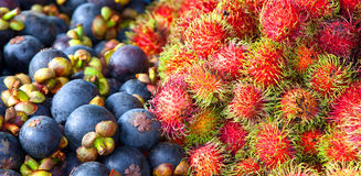 Rambutan and Mangosteen Royalty Free Stock Photography