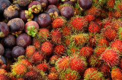 Rambutan and mangosteen Stock Photos