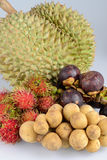 Rambutan, mangosteen, durian, longan Royalty Free Stock Photo