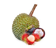 Rambutan, mangosteen and durian, tropical fruit isolated. On white background Royalty Free Stock Images