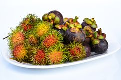 Rambutan and mangosteen isilated on white background Stock Images