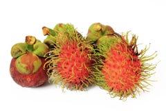 Rambutan and mangosteen Stock Images