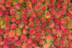 Rambutan no mercado de fruto fresco Imagem de Stock