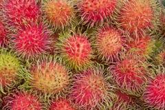 Rambutan oder haarige Frucht, populäre Frucht von Thailand stockfotografie