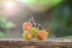 Rambutan på trägolv Royaltyfri Bild