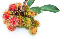 Rambutan popular fruit of Thailand Royalty Free Stock Photo