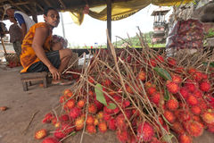 Rambutan producer. BALI - JANUARY 24. Rambutan producers selecting fruit for whole in Bali on January 24, 2012 in Bali, Indonesia. Indonesia is one of the few Royalty Free Stock Photos