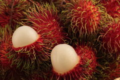 Rambutan pulp. Opened rind of rambutan, see white pulp among red hairy skin of rambutans Stock Image