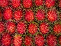 Rambutan. Sweet Delicious Fresh Summer Fruit Background Stock Image