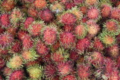 Rambutan, rambutans , rambutans background, rambutan in plastic. Box , red rambutan , ripe rambutan , rambutan for sale , rambutan fruit Royalty Free Stock Images