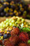Rambutan, snow pears and mangosteen Stock Images