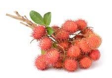 Rambutan sweet delicious fruit Royalty Free Stock Image