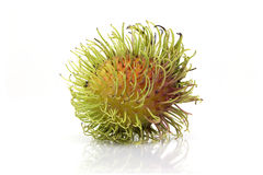"Rambutan sweet delicious fruit isolated on white background. The name 'rambutan' is derived from the Malay-Indonesian languages word for rambut or ""hair Royalty Free Stock Images"