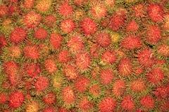 Rambutan in Thailand. Stock Fotografie