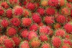 Rambutan in Thailand-Markt, süße köstliche Frucht lizenzfreie stockfotografie