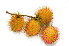 Rambutan Royalty Free Stock Image