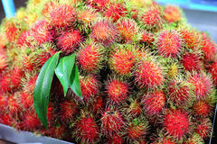 Rambutan (tropical fruit) Royalty Free Stock Photography
