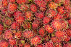 Rambutan. Tropical fruit in Thailand stock photography