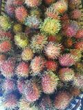 Rambutan - tropisk exotisk frukt av South East Asia, Filippinerna royaltyfria bilder