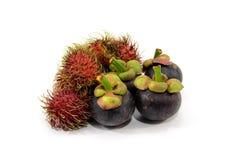 Rambutan und Mangostanfrucht Stockfotos