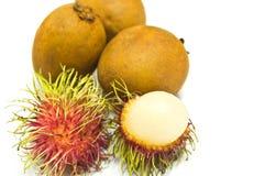 Rambutan und Sapotillbaum getrennt Stockfotos