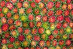 Rambutan wallpaper Stock Photography