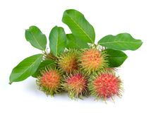 Rambutan on white background. Rambutan on a white background Royalty Free Stock Images