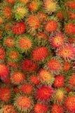Rambutanfrucht von Thailand Stockbilder