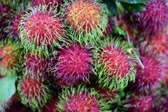 Rambutanfruit Stock Foto
