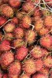 Rambutanfrukt i rött Arkivfoto