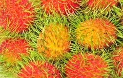 Rambutanfrukter arkivbilder