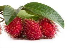 Rambutans bär frukt med bladet som isoleras på vit bakgrund fotografering för bildbyråer