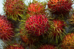 Rambutans closeup on the white background. Red rambutans closeup on the white background Royalty Free Stock Photography
