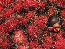 Rambutans e mangustão roxo imagens de stock
