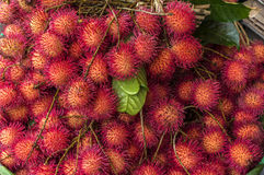 Rambutans. Fresh red rambutans sold in a fruit market in Thailand Stock Image