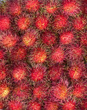Rambutans fruit background Royalty Free Stock Photo