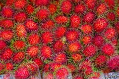 Rambutans fruit background, Rambutan sweet delicious fruit from. Thailand Royalty Free Stock Images