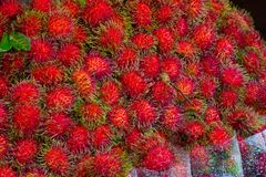 Rambutans fruit background, Rambutan sweet delicious fruit from. Thailand Royalty Free Stock Photos