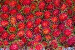 Rambutans fruit background, Rambutan sweet delicious fruit from. Thailand Stock Photos