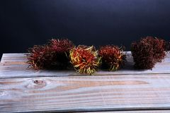 Rambutans fruit with leaf on table. Rambutan or hairy lychee.  Royalty Free Stock Photography
